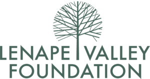 Lenape Valley Foundation